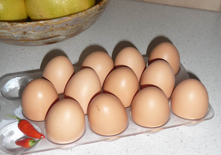 aweekofeggs_31may14