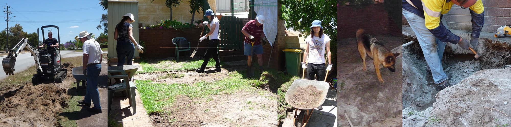 garden blitz_8&9nov14