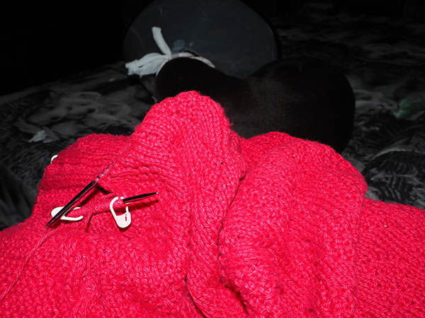 pomegranate blanket